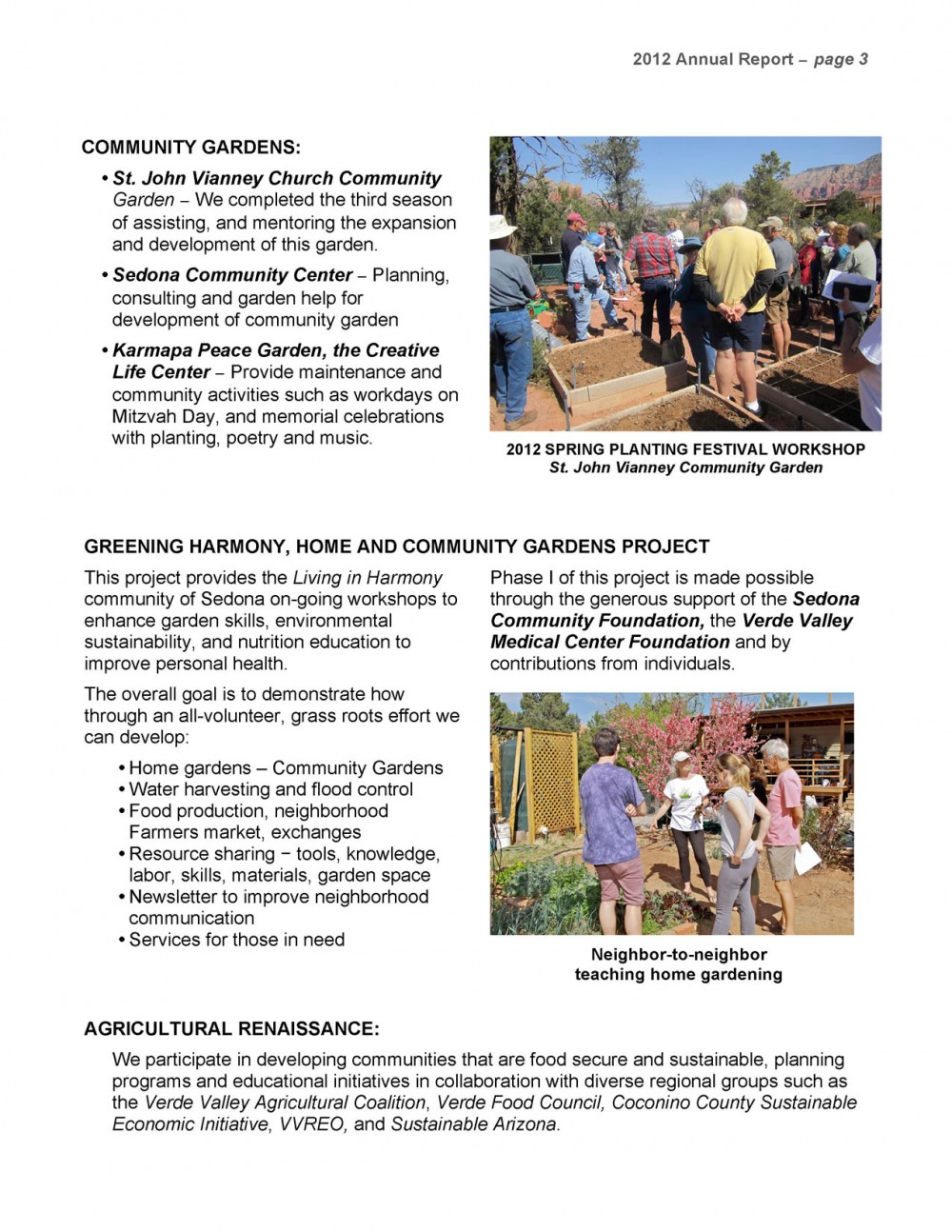 ANNUAL REPORT 2012_Page_3