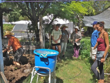 Building Biodynamic Compost