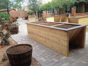 Planters and Barrels in place waiting for gardeners - February 27, 2013