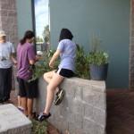 Teen-Center-planters3