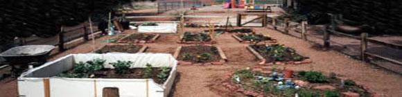 making-garden