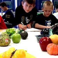 student-draw-veggies
