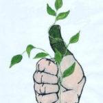 Verde Thumbs Garden Club