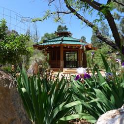 PG-pagoda-iris
