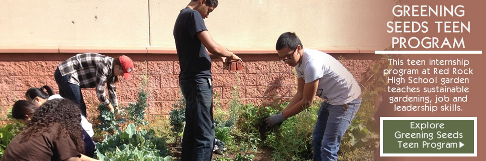 SCHOOL GARDENS PROGRAM | Red Rock High School Garden